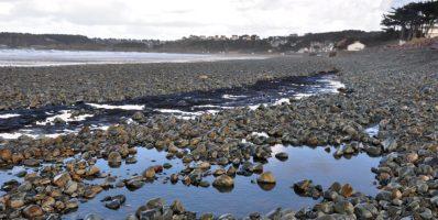 Suspicion de pollution aux hydrocarbures, plage de Caroual