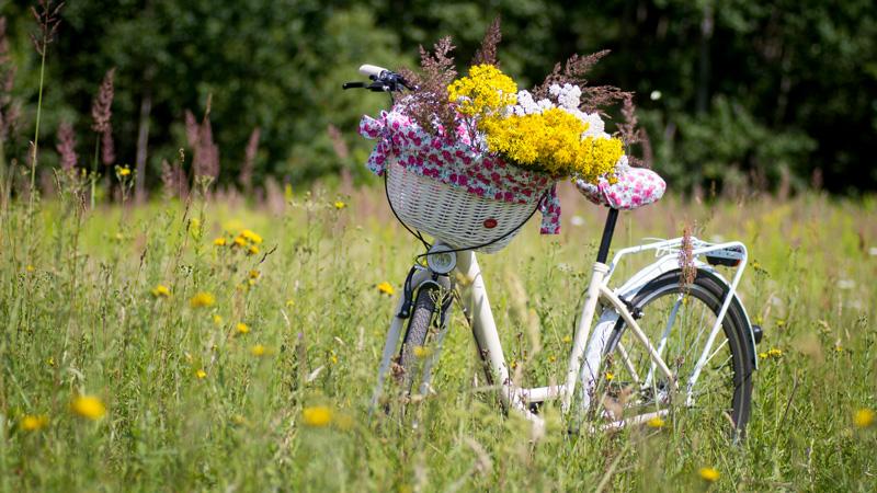 Aide incitative à l'acquisition de Vélo à Assistance Electrique