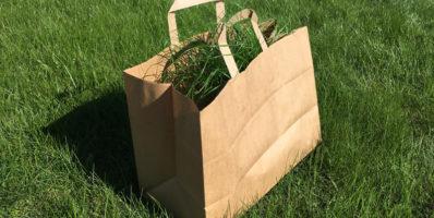 Gestion des déchets verts