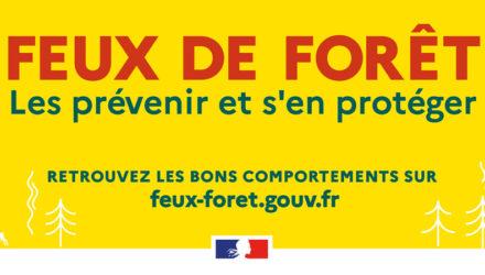 Feux de forêt, les prévenir et s'en protéger