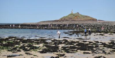Appel à bénévoles du Grand Site Cap d'Erquy – Cap Fréhel pour la sensibilisation des pêcheurs à pied